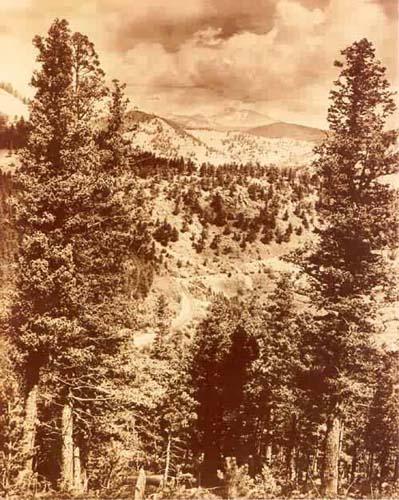 Estes Park Mountain Scene