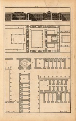 Palladio XV