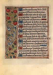 Book of Hours Leaf (Decorative Panel Borders)
