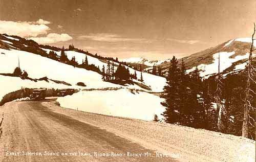 Early Summer Scene on the Trail Ridge Road