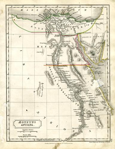 Aegypus Antiqua