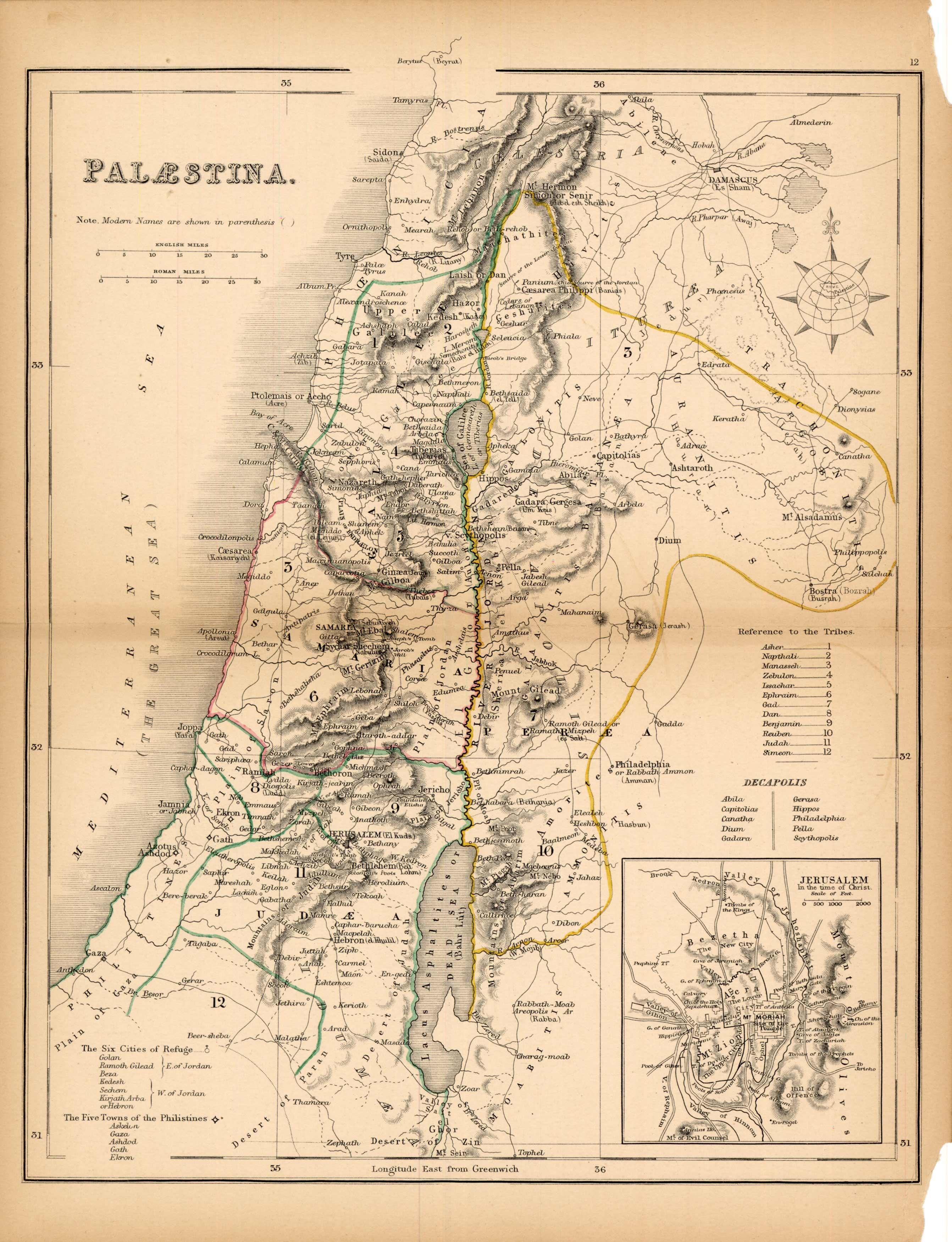 Palaestina (Palestine)