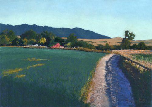 Beas Ranch